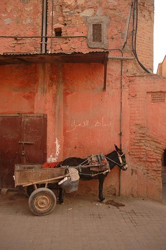 Marrakech10.jpg