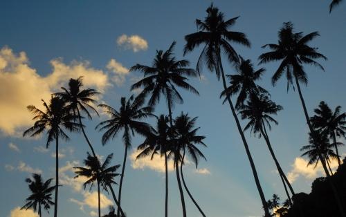 Samoa03.jpg